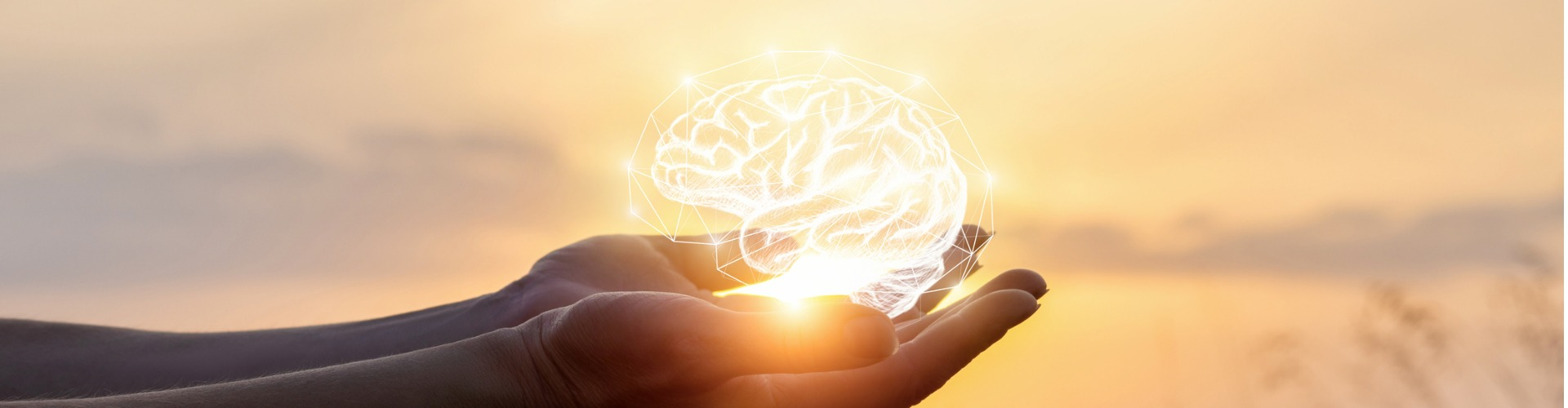 Image of hands cupping a white line drawing of a brain in the sun