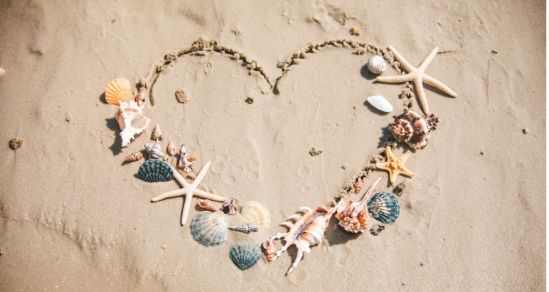A photograph of a heart drawn in the sand of a beach. Around the edges of hte heart, decoratively placed, are a variety of seashells, and starfish.