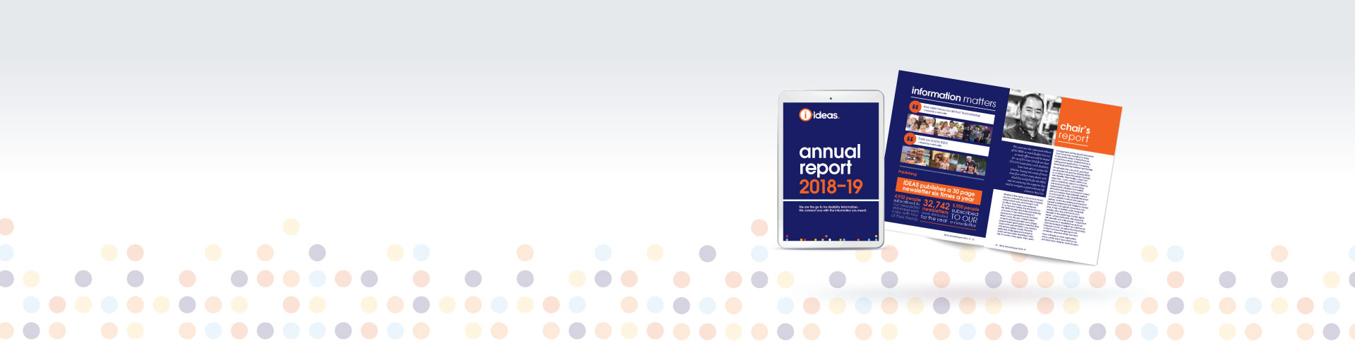 Graphic of the Annual Report cover