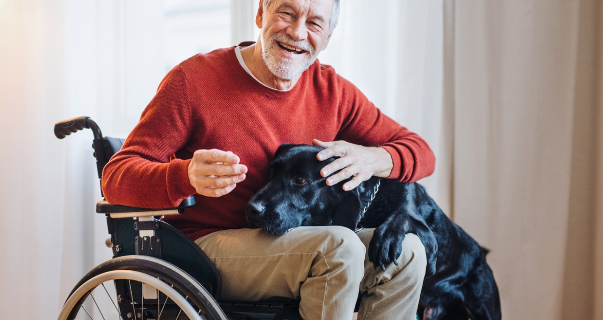 Man in a wheelchair with a black dog