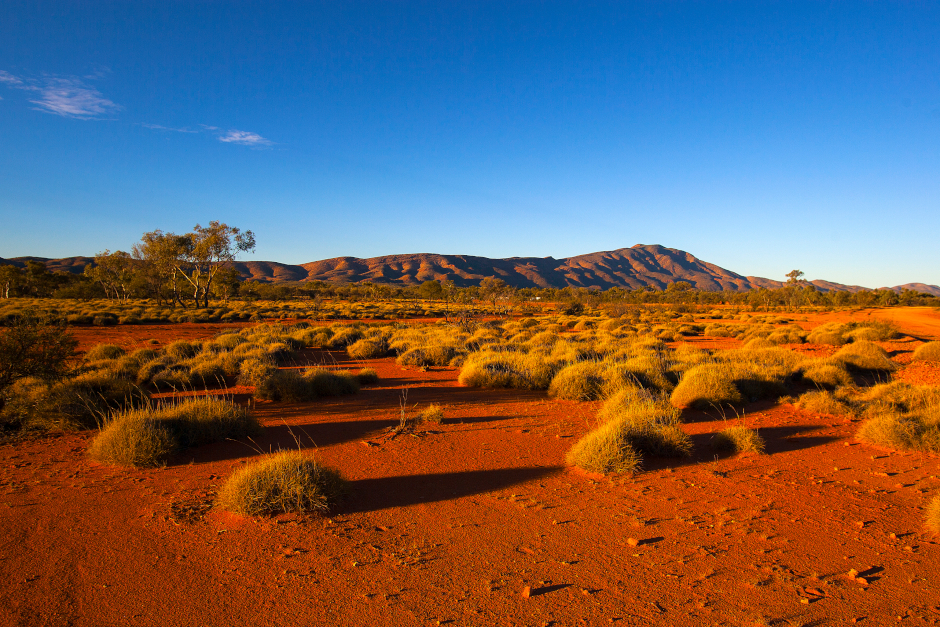 Australian outback with red dirt, shrubs, blue sky and a mountain range in the distance.