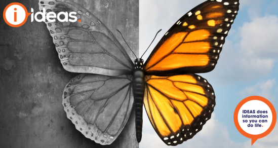 Image is a butterfly. One side of the image is dark, the other is bursting with colour. Concept photo of mental health.