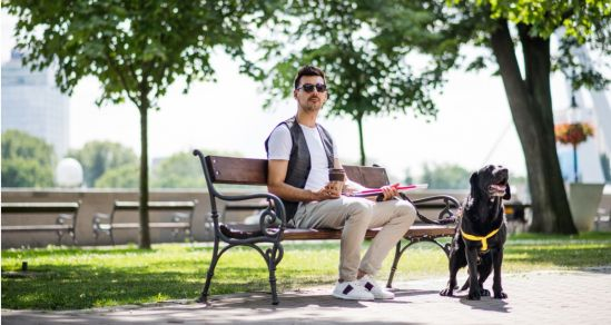 An image of a young man sitting on a park bench. He wears sunglasses, is holding a cane, and beside him is a guide dog.