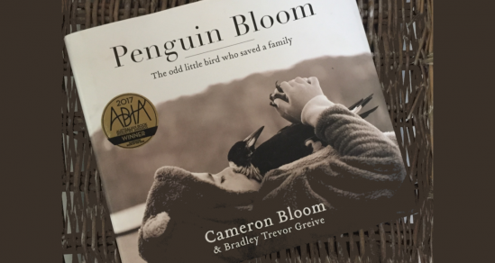 A image of the Book Penguin Bloom. The cover is in black and white. A young boy layin gon his back ina furry suit. HE hold on his chest a magpie who is grasping his hands with her claws.