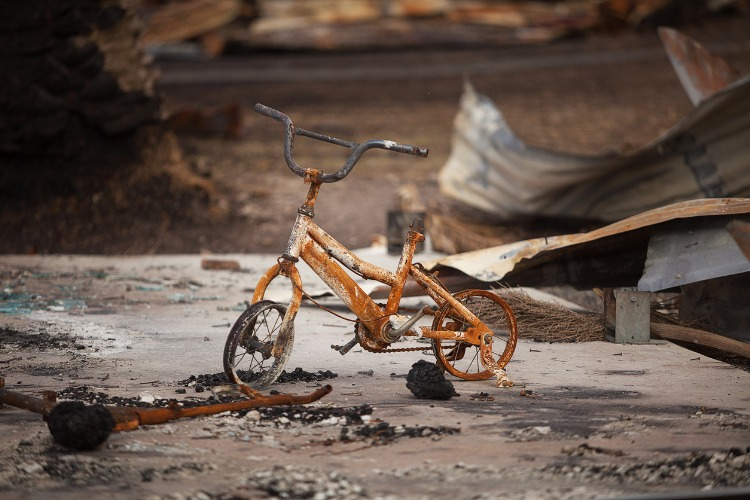 fire damaged bicycle picture