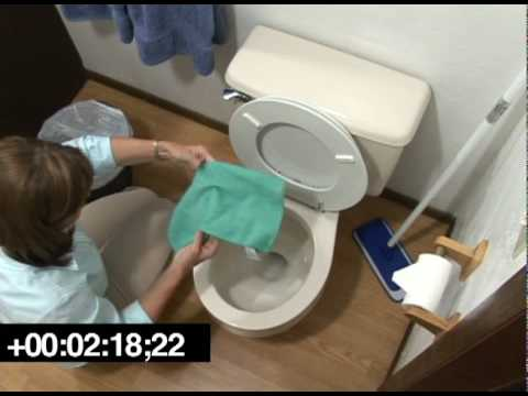 Lady cleaning a toilet