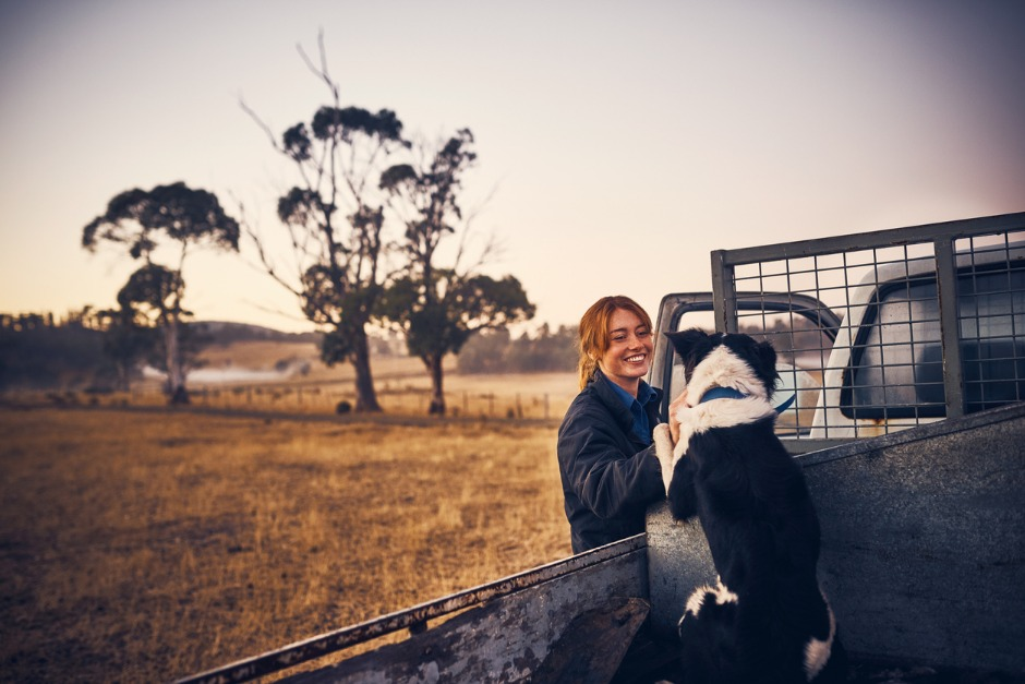 Image of a woman petting a working dog on a ute tray.