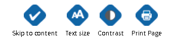 Accessibility Options Toolbar